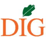 DIG icon