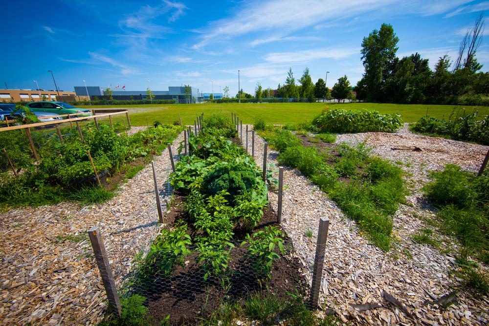 GardenTour2015-65.jpg