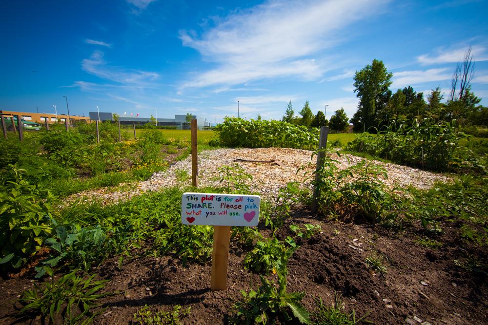 GardenTour2015-67.jpg