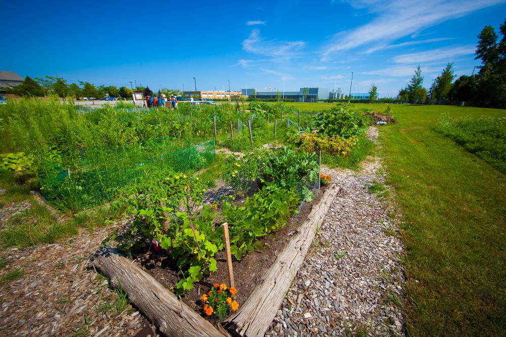 GardenTour2015-68.jpg