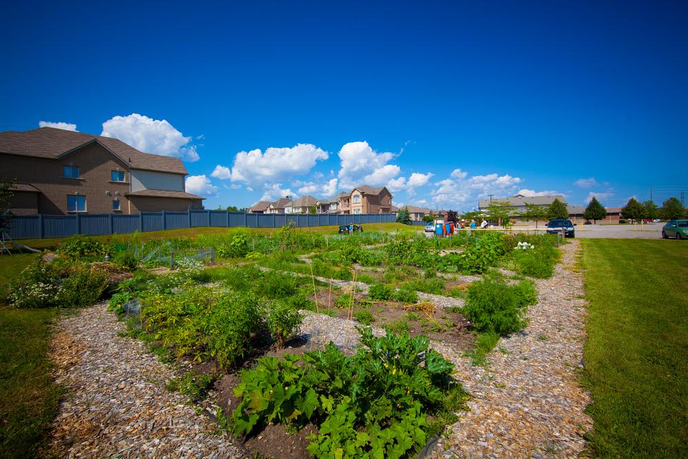 GardenTour2015-71.jpg