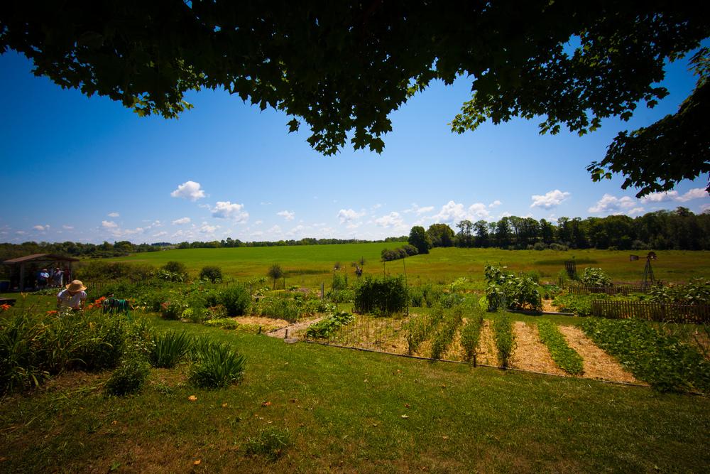 GardenTour2015-31.jpg