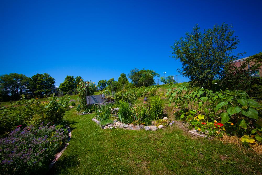GardenTour2015-32.jpg