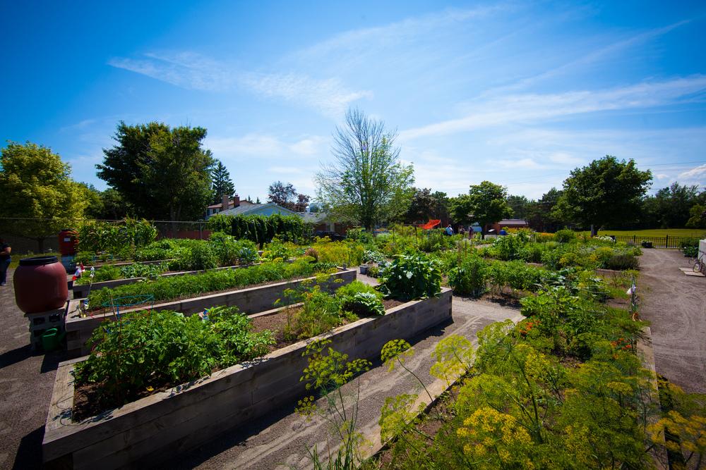 GardenTour2015-46.jpg