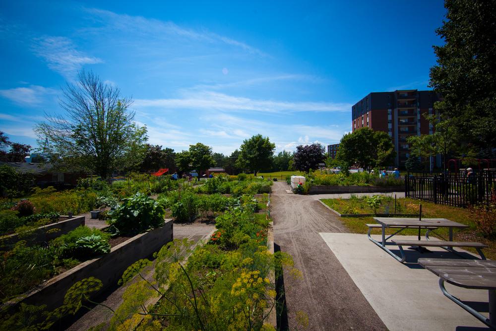 GardenTour2015-47.jpg