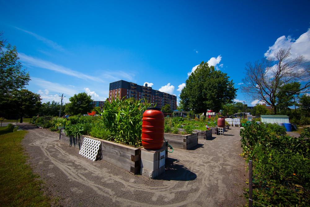 GardenTour2015-49.jpg