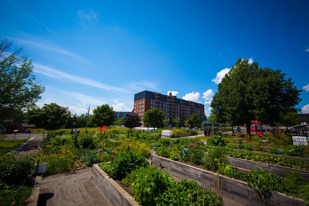 GardenTour2015-51.jpg