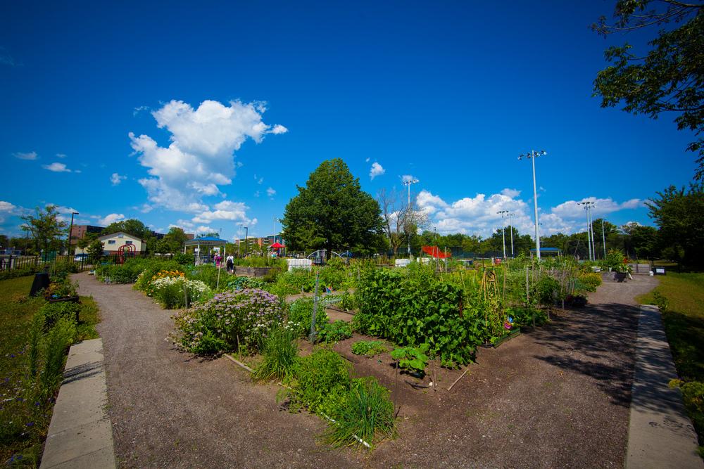 GardenTour2015-53.jpg