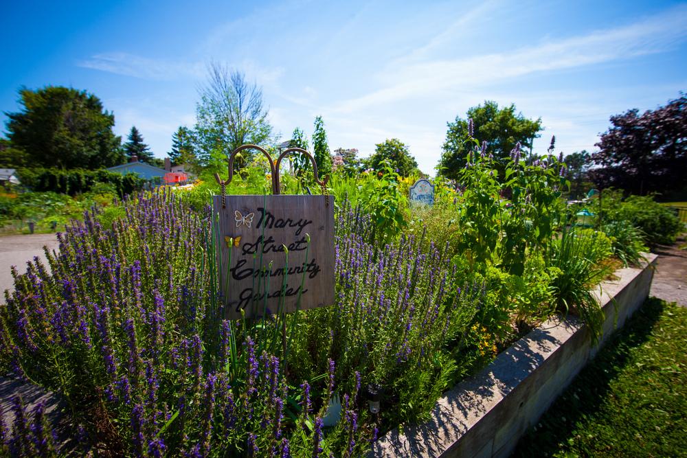 GardenTour2015-57.jpg