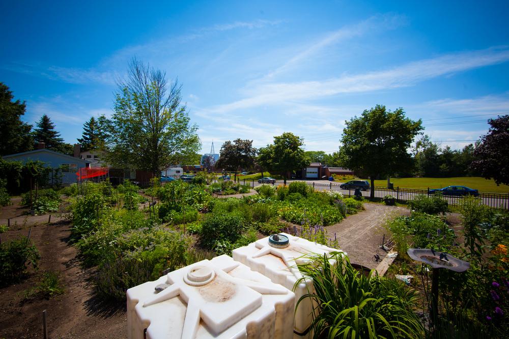GardenTour2015-58.jpg