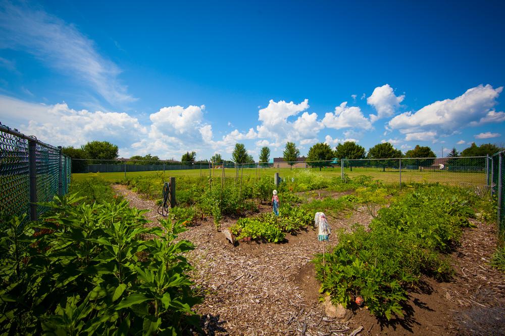 GardenTour2015-63.jpg