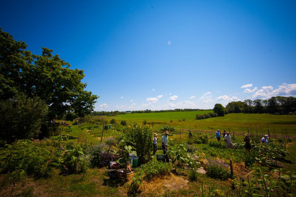 GardenTour2015-35.jpg