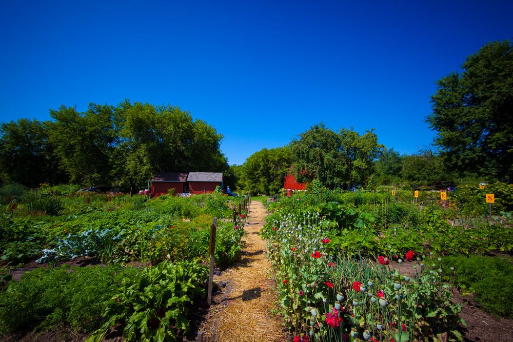 GardenTour2015-16.jpg