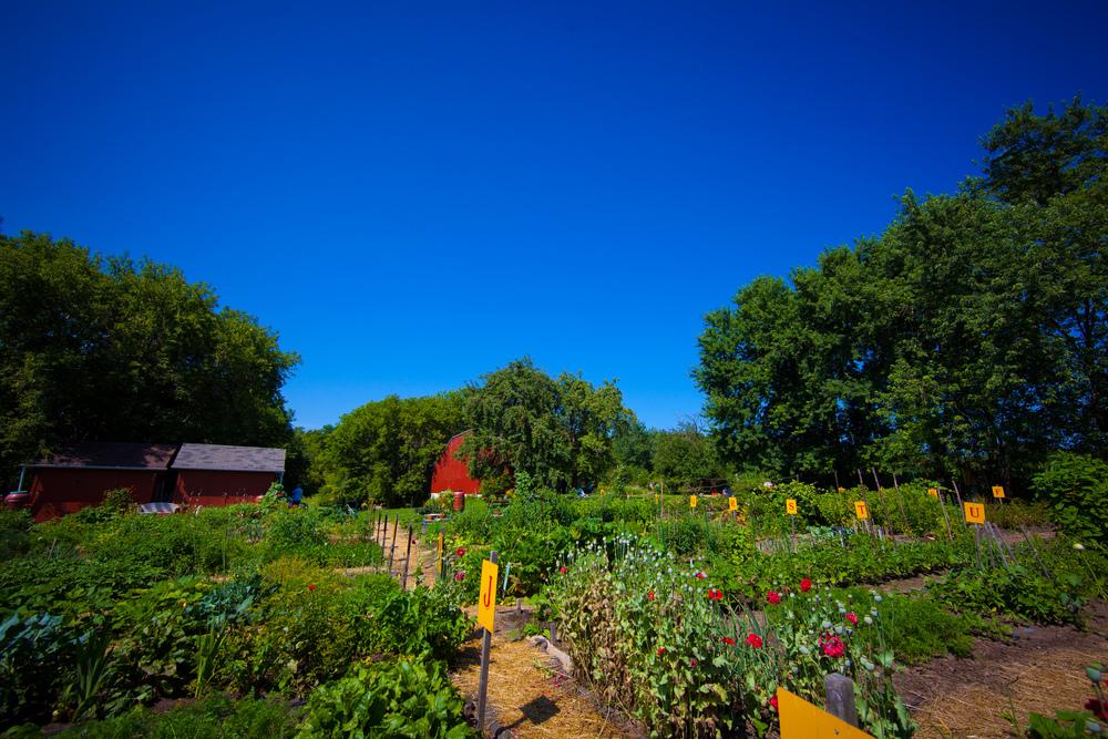 GardenTour2015-18.jpg