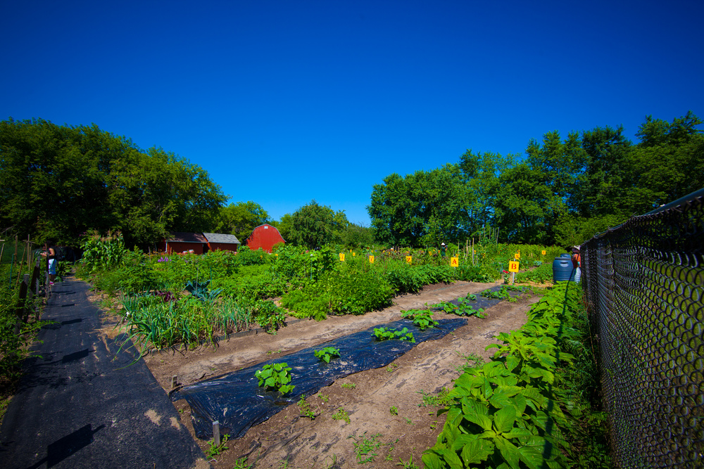GardenTour2015-20.jpg