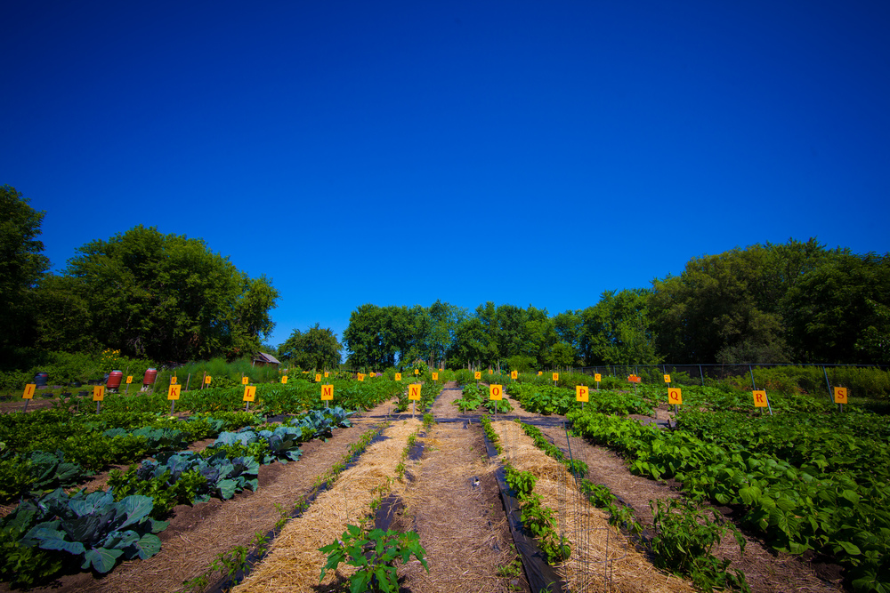 GardenTour2015-24.jpg