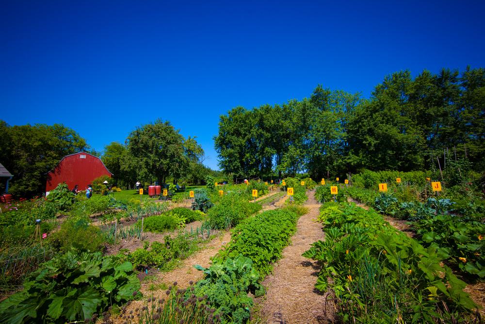 GardenTour2015-27.jpg