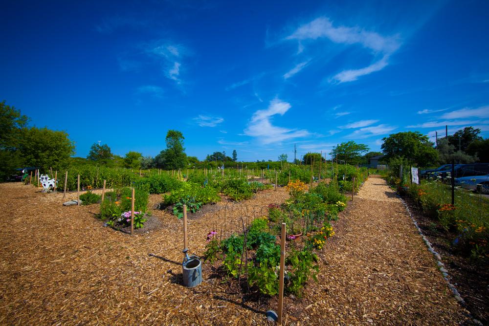 GardenTour2015-74.jpg