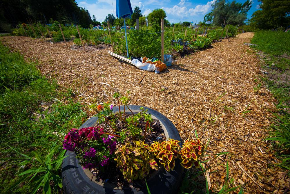 GardenTour2015-78.jpg