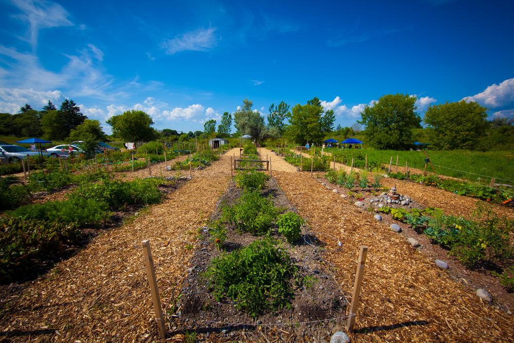 GardenTour2015-79.jpg