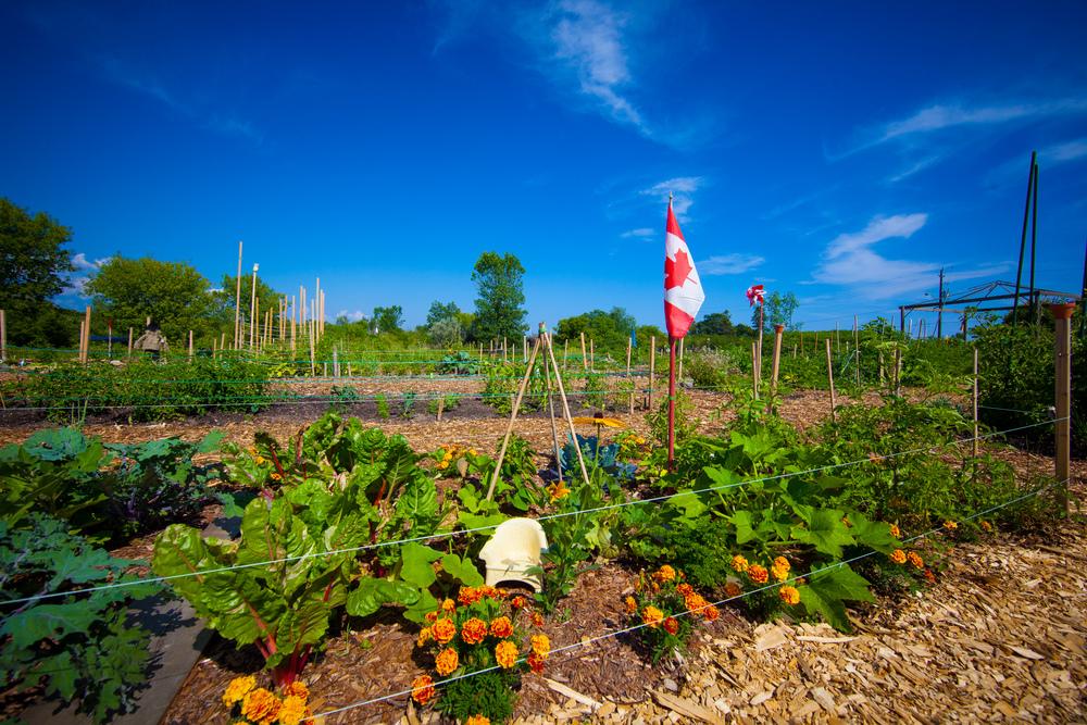 GardenTour2015-81.jpg