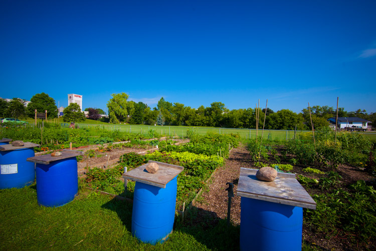 GardenTour2015-3.jpg