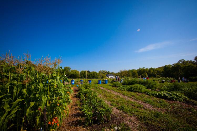 GardenTour2015-9.jpg