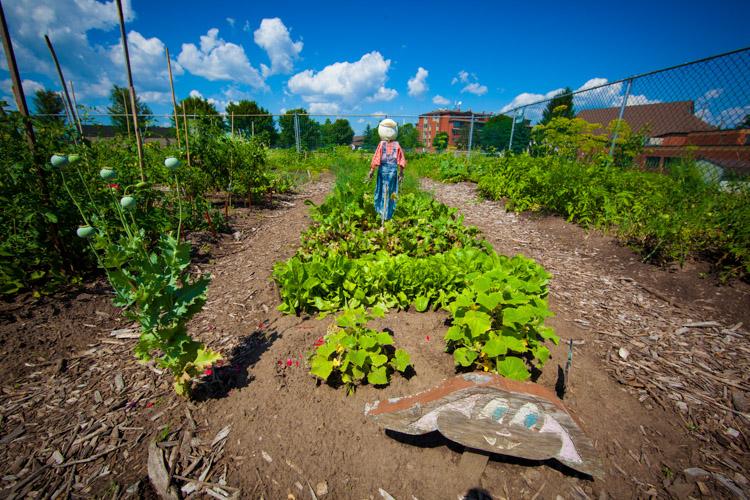 GardenTour2015-62.jpg