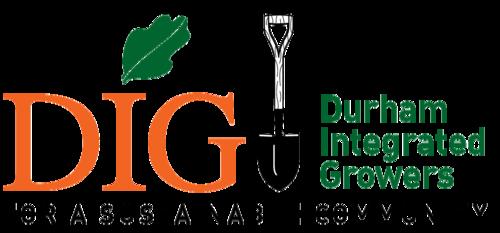 Image of DIG log.