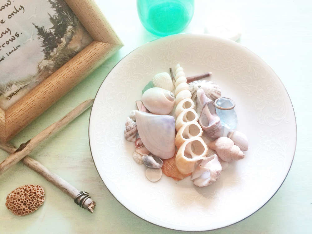 seashell-home-decor-wood-beach-house-lace-detail-dish-tray-element.jpg