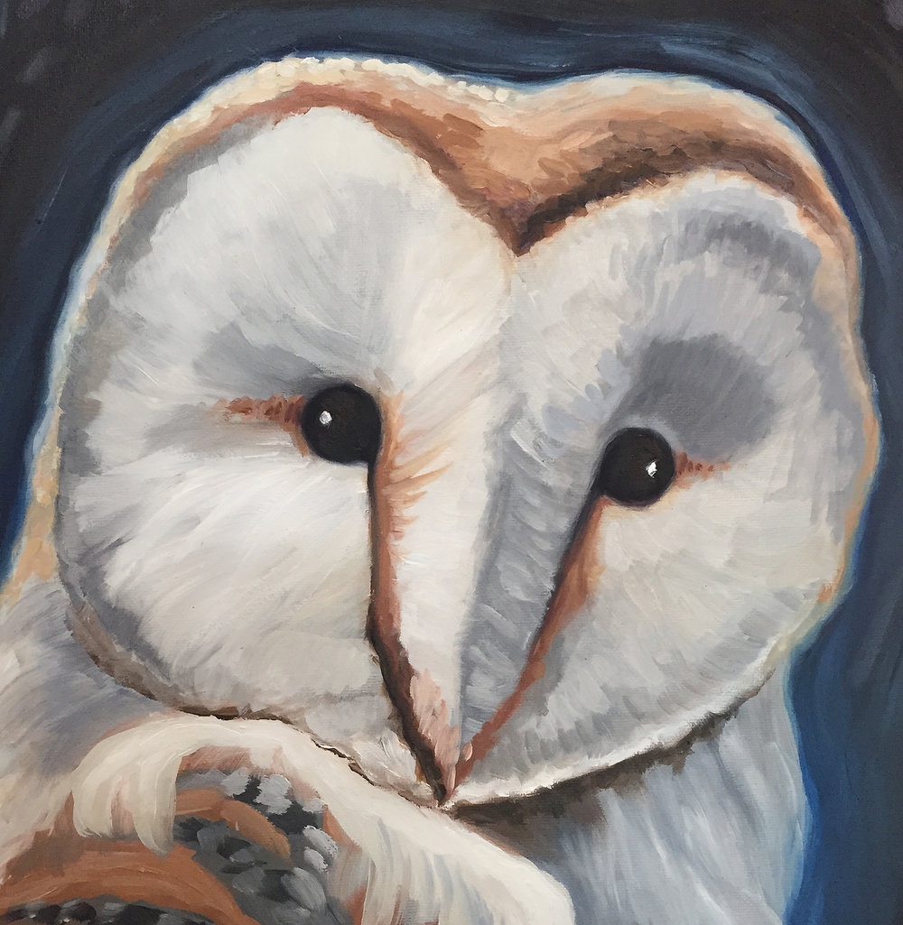 A note about the symbolism of this painting: The main image in this painting is the Barn owl. From the Egyptians to the Native Americans the owl has long been a powerful symbol in many cultures.The ancient greeks used the owl as an attribute of Athena the goddess of learning. They also used owls to guard the parthenon.  Beatrix Potter, A.A. Milne (Winnie the Pooh), J. K. Rowling (Harry Potter) and many more authors continue to reference and associate owls with magic, mystery and wisdom.  The full moon represents the constant and dependable cycles of aging, going from new to full to darkness each month. The constellation in the upper right part of the canvas is Virgo. In astrologic mythology it was believed that this constellation was actually the last God to live with humans. This constellation and symbol of Virgo was associated with a renewal of culture in Renaissance times.  This painting speaks to the interconnectedness of wisdom, cycles of aging and heavenly enlightenment.