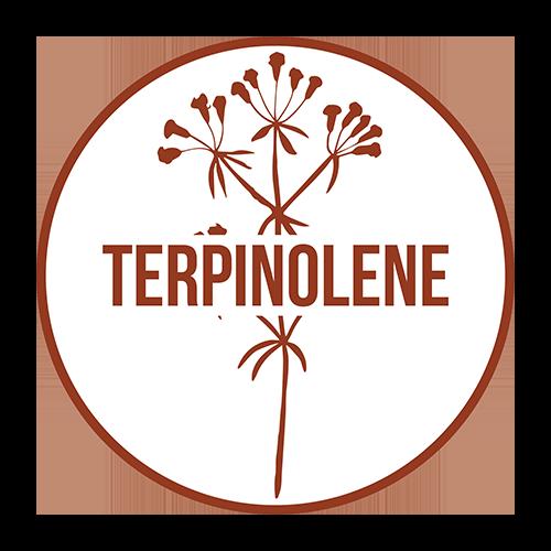 icon_terpene_terpinolene.png