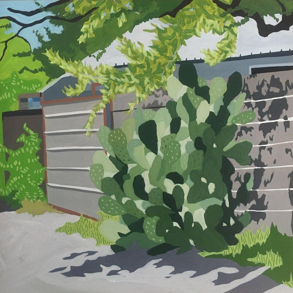Alley Cactus