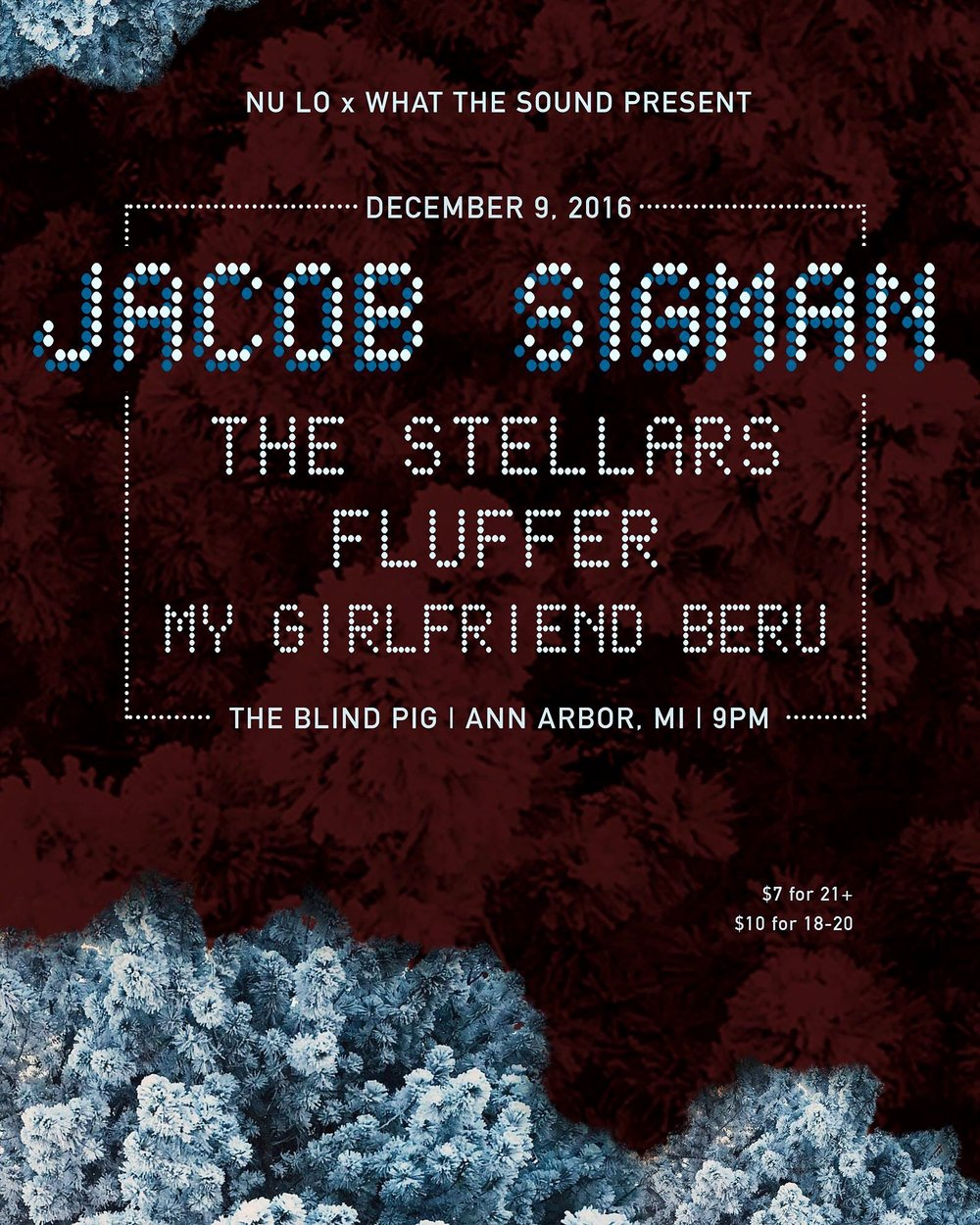 Jacob Sigman / The Stellars / Fluffer / My Girlfriend Beru - Artwork by Riley Savage  December 9th, 2016 at Blind Pig