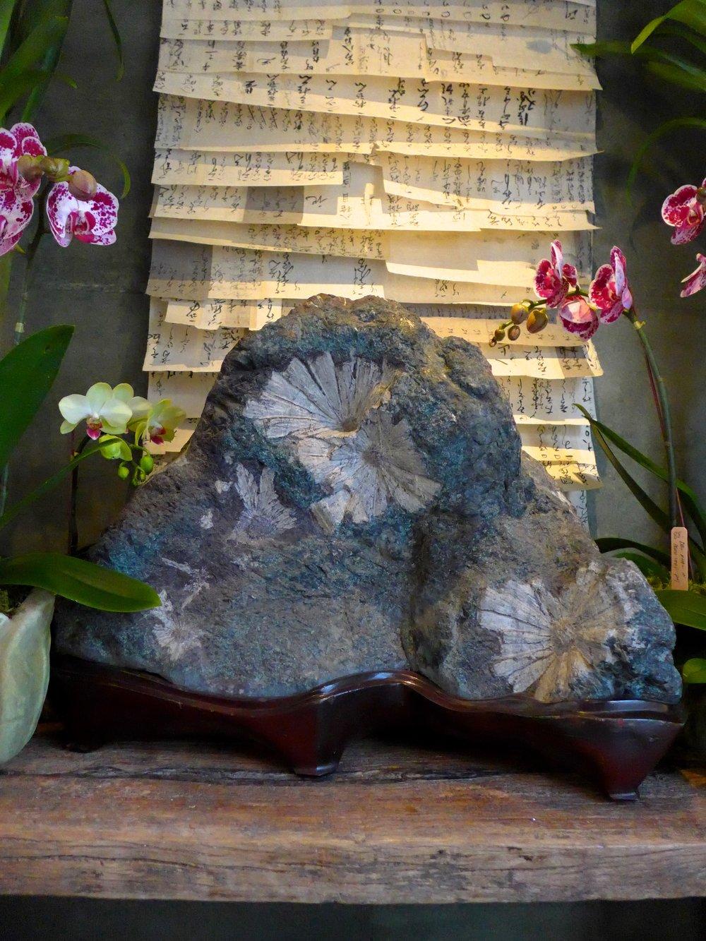 Kikumon Seki,Chrysanthemum Patter Stones