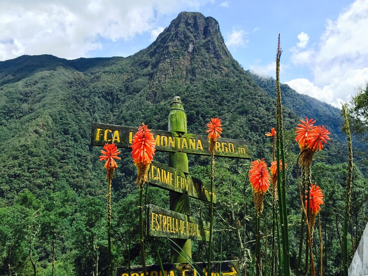 Journey to the Highlands of Colombia - 7 DAYS OF EXHILARATING ADVENTURESyoga | nature | culture