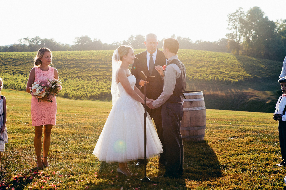 erica_eric_linganore_winery_vineyard_wedding_carnival_wedding_im_kristen_photography_maryland77of146.jpg~original.jpeg