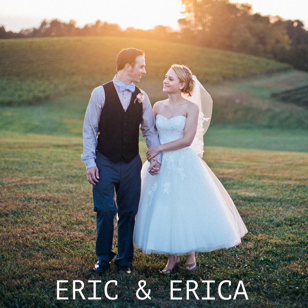 erica_eric_linganore_winery_vineyard_wedding_carnival_wedding_im_kristen_photography_maryland120of146.jpg~original.jpeg