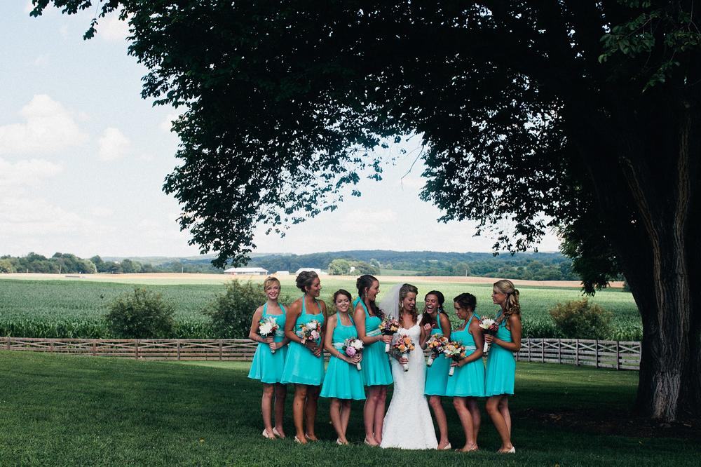 becca_nick_maryland_wedding_photographer_walkers_overlook_wedding_photography22of166.jpg~original.jpeg