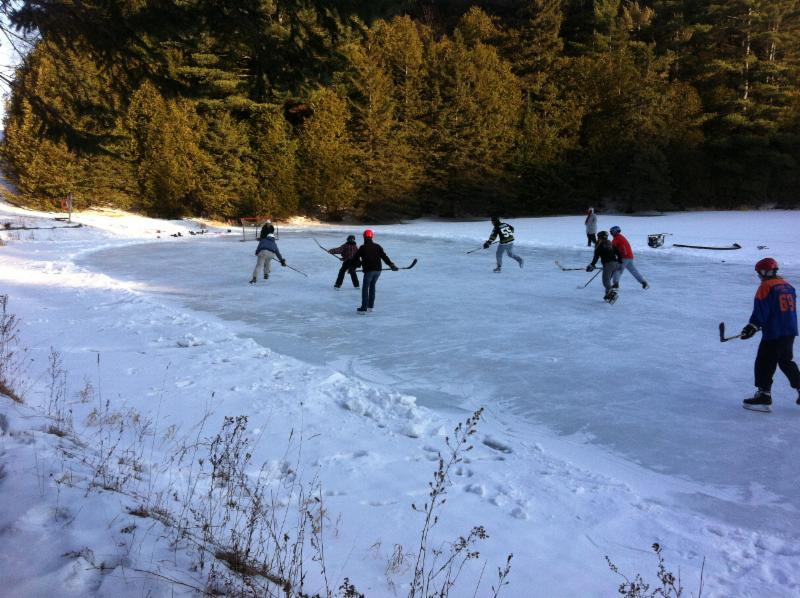 Hockey on the Pond 2015.jpg