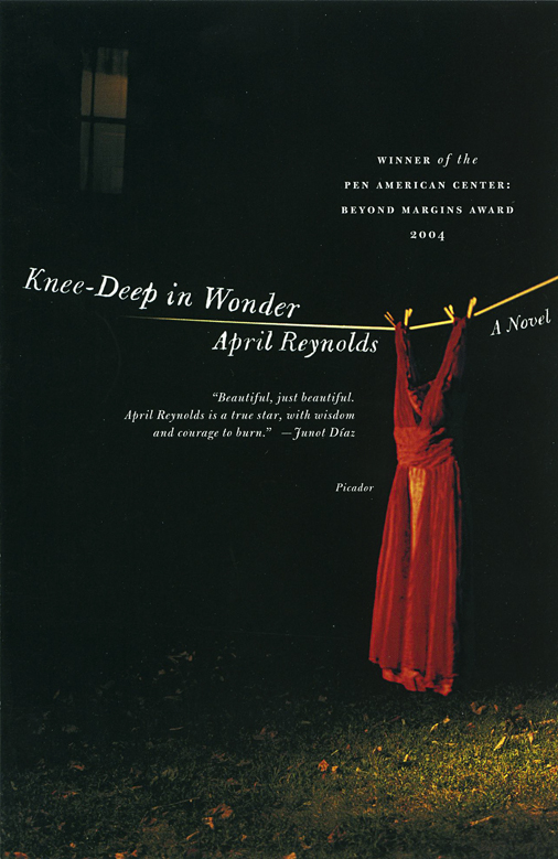 Knee Deep in Wonder, a novel by April Reynolds