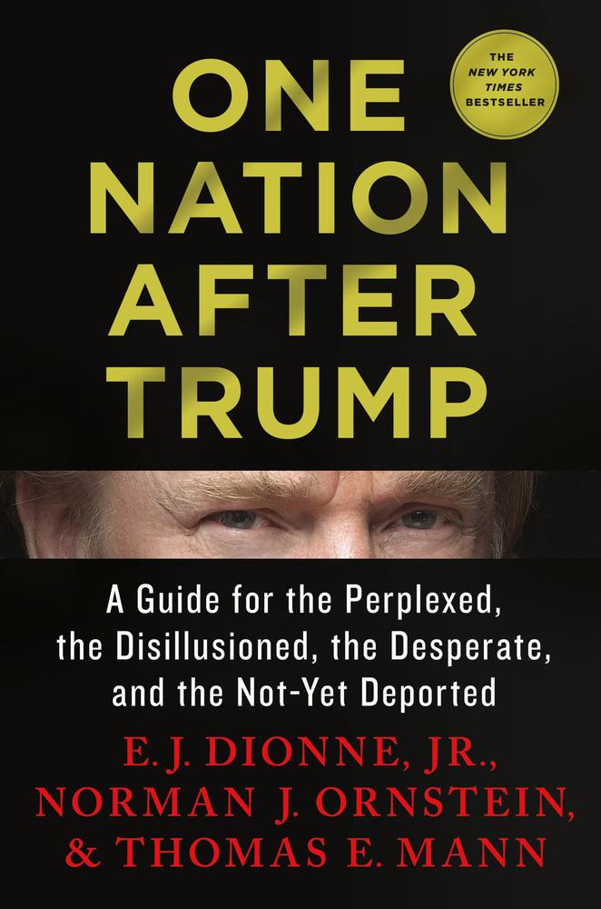 One Nation Under Trump.jpg
