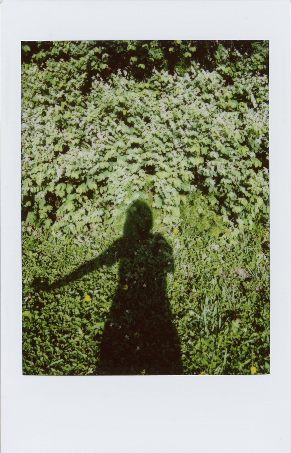 greenwoman.jpg