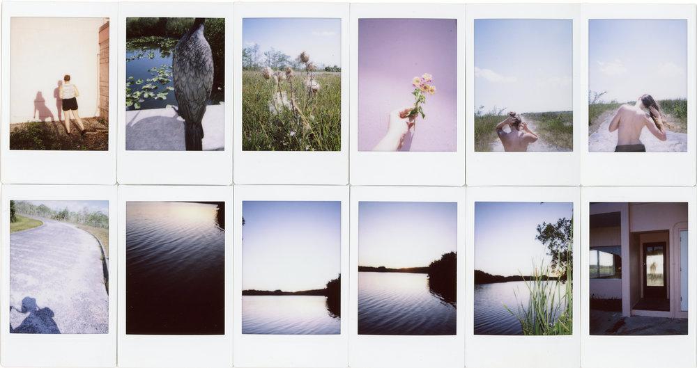 polaroid everglades collage.jpg