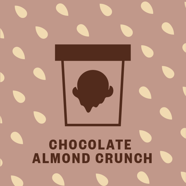 Chocolate Almond Crunch Pint Illustration