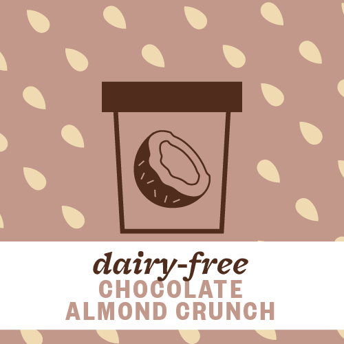 Dairy-Free Chocolate Almond Crunch Pint Illustration