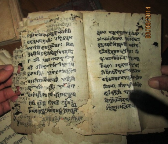 An example of a Sanskrit manuscript from Kashmīr, partially eaten by ants.