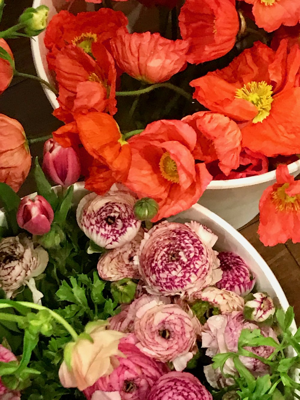 Poppies and Ranunculus