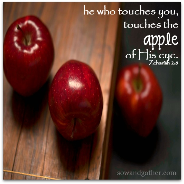 he-who-touches-you-touches-the-apple-of-his-eye-sowandgather