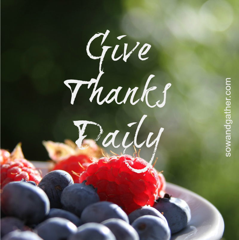 Give-Thanks-Daily-SowandGather